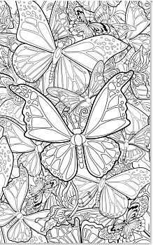 Kleurposter: Vlinder
