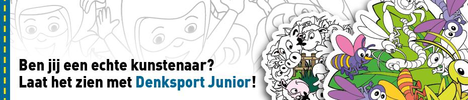 Denksport junior kleuren